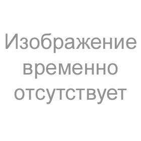BituPrimer